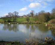 Barnburgh Hall Pond